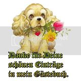 danke gb-gbpic-39